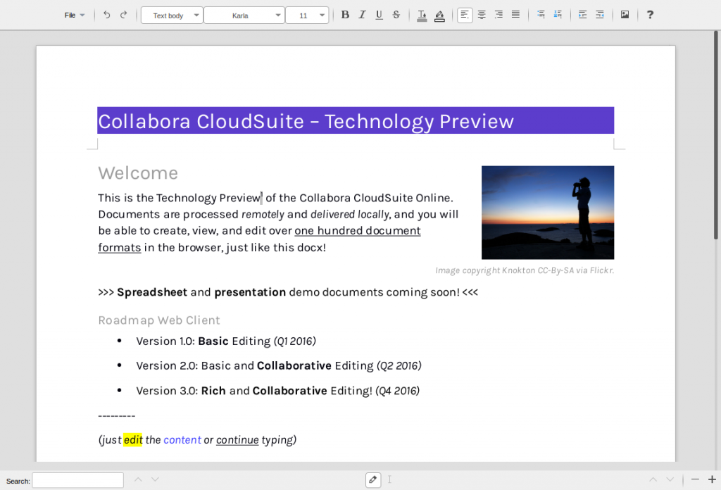 basic-editing.docx_–_Collabora_CloudSuite_-_2015-11-19_09.19.09